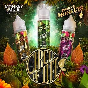 Circle of Life by 12 Monkeys